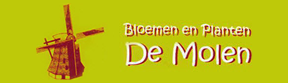 Bloemen De Molen - Bloemen & Planten De Molen